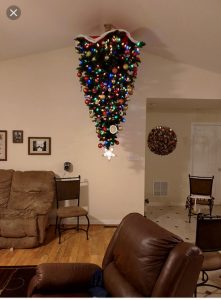 Ideas Navidad pet friendly